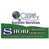 Montana Cabin Fever Auction