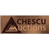 Livestock Equipment Auction for Flying V Feeders