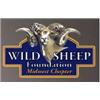 2020 South Dakota Bighorn License