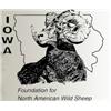 Iowa FNAWS Banquet Auction 2019