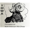 Iowa FNAWS Banquet Auction 2020
