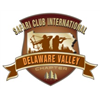 SCI Delaware Valley Chapter