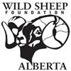 21st Annual Sheep Show Fundraiser