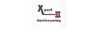 Expert Auctioneering