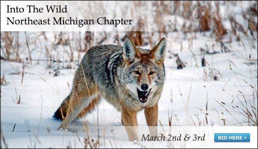 Into The Wild-Northeast Michigan Chapter Safari Club International 2018 Live Auction