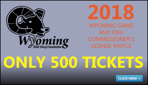 Wyoming Wild Sheep Foundation 2018 Annual Convention and Fundraiser