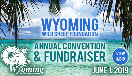 Wyoming Wild Sheep Foundation 2019 Annual Convention and Fundraiser