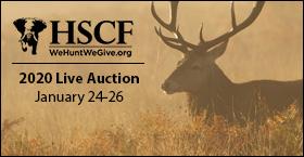 2020 HSCF Live Auction