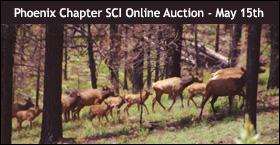 2020 Phoenix Chapter SCI Online Auction