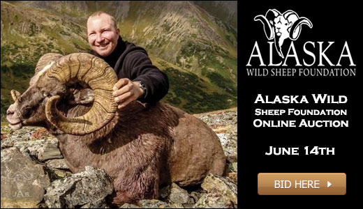 5th Annual Alaska Wild Sheep Foundation Banquet and Fundraiser