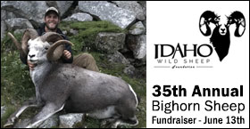 35th Annual Bighorn Sheep Fundraiser