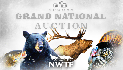 NWTF Live Summer Grand National Call for All Auction