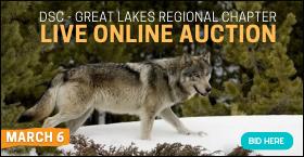 DSC - Great Lakes Regional Chapter Live Online Auction