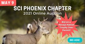 2021 Phoenix Chapter SCI Online Auction