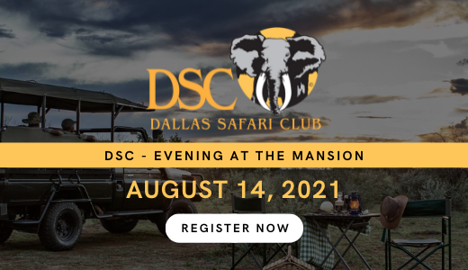 DSC - Evening at the Mansion