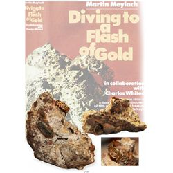 Ornate gold ring embedded in large clump of rock, as found by Marty and featured on the cover of Fla