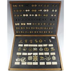 1910-1980: Large collection of British and Commonwealth military badges and buttons