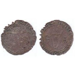 Philip and Mary (1554-1558) Irish groat