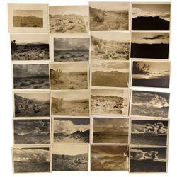NV - Desert Photos