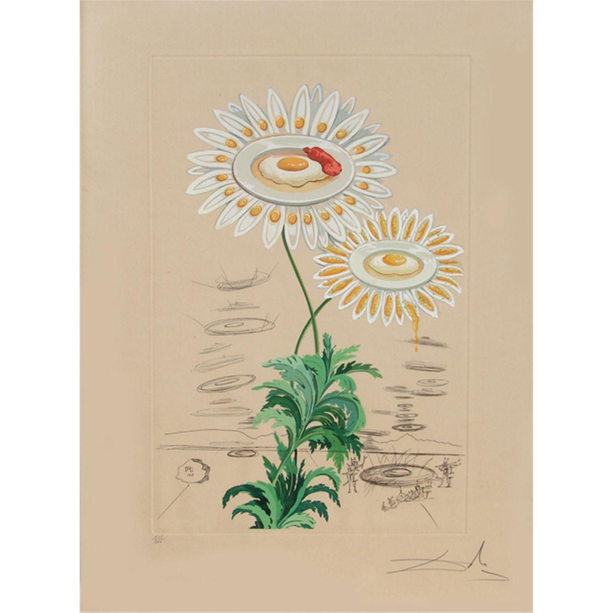 Salvador Dali, Chrysanthemum Frutescens, Photolithograph Engraving