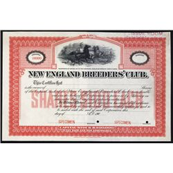 New England Breeder's Club (Illegal Horse Racing Track) Specimen Stock Certificate.
