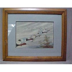 """Framed watercolor """"Flying V"""", signed Rex"""