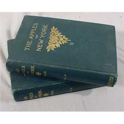 """2 Vol. Set """"The Apples of New York"""" by S.A. Beech, 1905"""