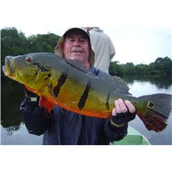6-day/7-night Peacock Bass Yacht trip for one angler aboard the  Blackwater Explorer in Brazil