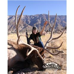 3-day trophy bull elk hunt for one hunter and one non-hunter in Utah - includes trophy fees