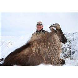 5-day tahr hunt for one hunter and one non-hunter in New Zealand - includes trophy fees