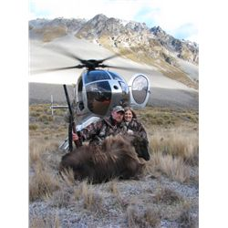 5-Day Red Stag hunt for two hunters at Kuranui New Zealand - includes trophy fees for two Silver Med
