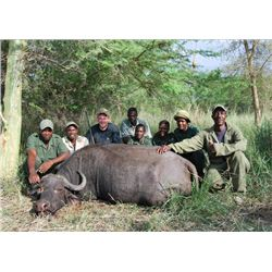 10-day buffalo hunt for one hunter in Zimbabwe - includes trophy fees