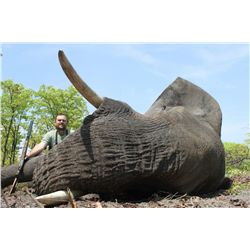 7-day non-export elephant bull hunt for one hunter in Namibia