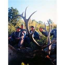 5-day bull elk hunt for one hunter in New Mexico with Colorado Buck