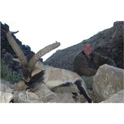 4-day Gredos or Southeastern ibex hunt for one hunter in Spain - includes trophy fees