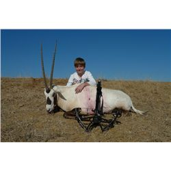 3-day Arabian oryx hunt for one hunter and one non-hunter in Texas - includes trophy fees for one ma