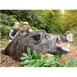 5-day wild boar hunt plus one full day VIP sightseeing for two hunters in Turkey - includes trophy f
