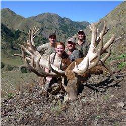 3-day red stag hunt for two hunters in New Zealand