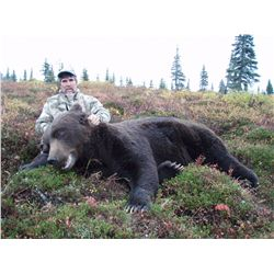 20-day brown and black bear, moose, wolf and wolverine hunt for one hunter and one non-hunter in SW