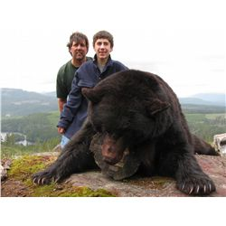5-day Island Black Bear hunt for two hunters on Vancouver Island - Includes trophy fees