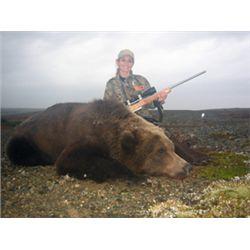 10-day brown bear for one hunter in Iliamna, Alaska