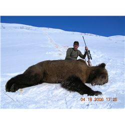 10-day brown bear hunt for one hunter in Kodiak, Alaska