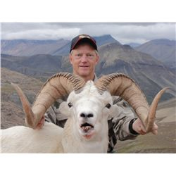 9-day Dall Sheep hunt for one hunter in NWT Canada - includes trophy fees