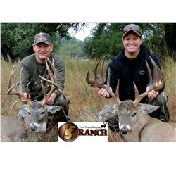 3-day white tail deer hunt for two hunters and two non-hunters in Texas - includes trophy fees up to