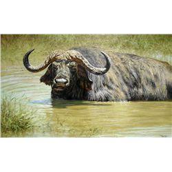 Flies  original oil on canvas by wildlife artist, Tony Forrest