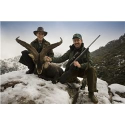 5-day Southeastern Ibex hunt for one hunter in Spain - includes trophy fees