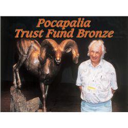Pocapalia Trust Fund Bronze