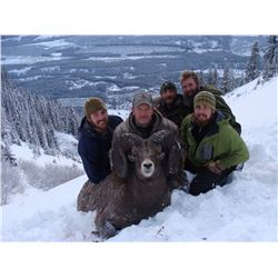 BC Special Sheep Permit