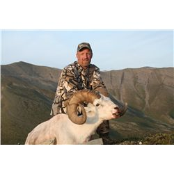 10-Day Backpack Dall's Sheep Hunt for 1 Hunter