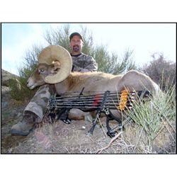 California Desert Bighorn Sheep Permit